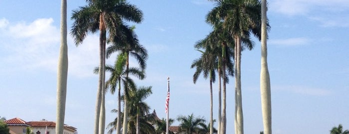 Town of Palm Beach is one of fun excursions.