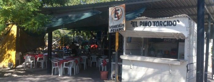 Panucheria El Pino Torcido is one of Restaurantes en Ciudad del Carmen, Campeche.
