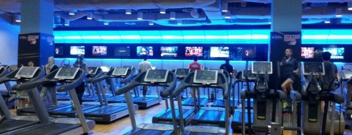 Fitness First Platinum is one of Orte, die Ivan gefallen.