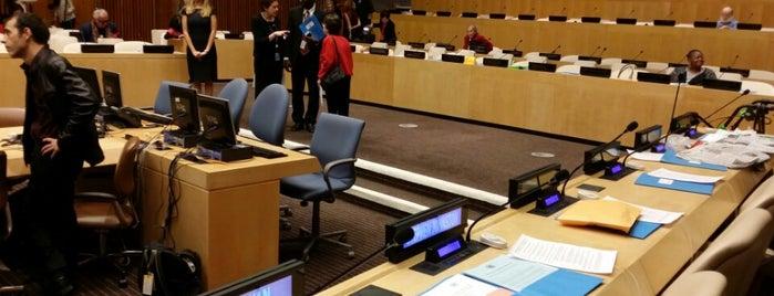 Organización de las Naciones Unidas is one of NYC.