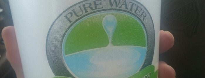 Pure Water Ice and Tea Company is one of Locais curtidos por Whitogreen.