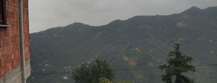 Kömürcü Köyü is one of Trabzon.