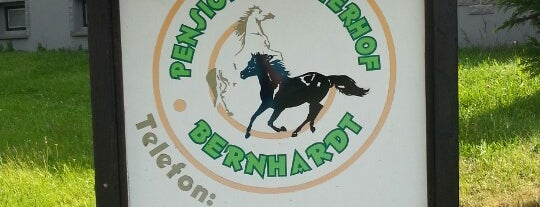 Pension & Reiterhof Bernhardt is one of Locais curtidos por Tino.