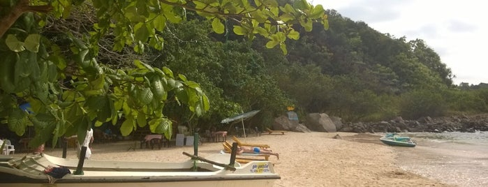 Jungle beach is one of Locais curtidos por Anton.