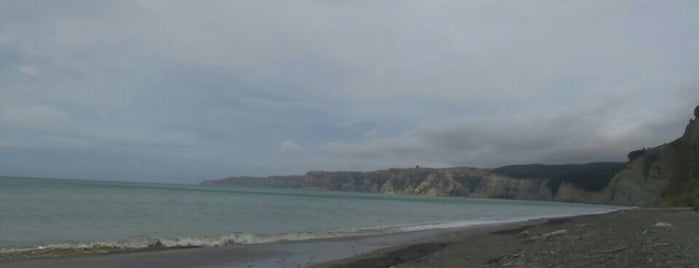 Cape Kidnappers is one of Lieux qui ont plu à Cusp25.