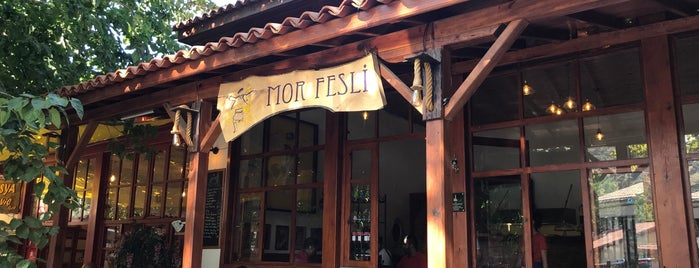 Mor Fesli is one of Tire Ödemiş Birgi.