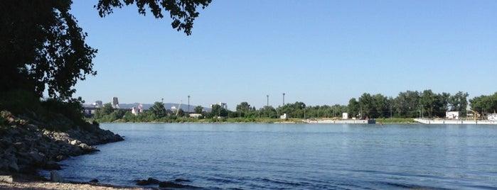 Dunajská pláž is one of Bratislava.