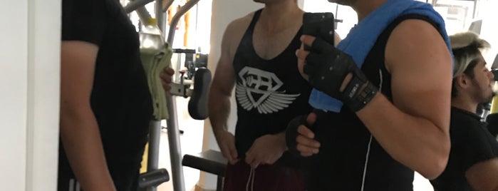 1e1 Fitness is one of Yeti'nin Kaydettiği Mekanlar.