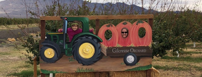 Gilcrease Orchard is one of Tempat yang Disukai Blondie.