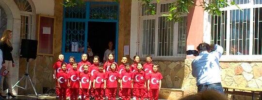 Bilgi Bulut İlkogretim Okulu is one of Orte, die Yunus gefallen.