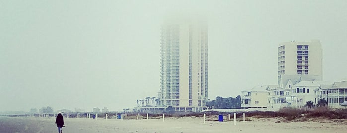 Palisade Palms Condominiums is one of สถานที่ที่ Gregory ถูกใจ.