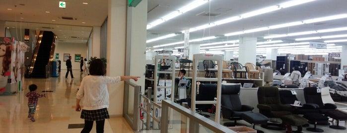 Nitori is one of สถานที่ที่ 高井 ถูกใจ.