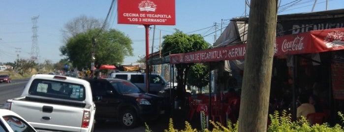 Cecina de Yecapixtla Los 3 Hermanos is one of Lugares favoritos de Max.