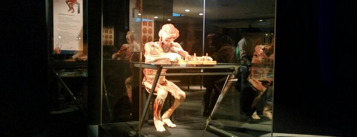Gunther Von Hagens' BODY WORLDS is one of Alessandroさんのお気に入りスポット.