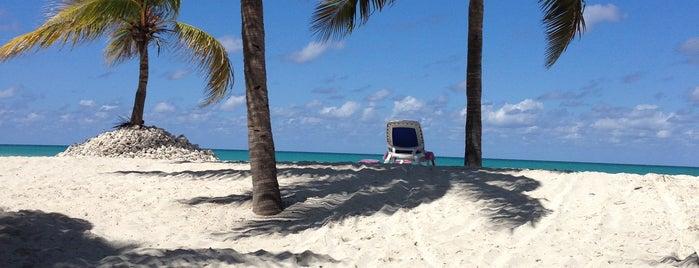Paradisus Varadero Resort & SPA is one of Cuba.