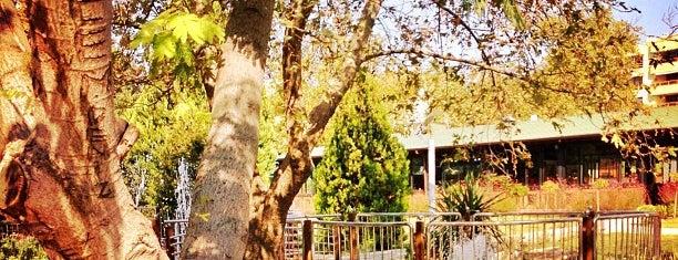Güzel Sanatlar Parkı is one of Karşıyaka gezilecek yerler.