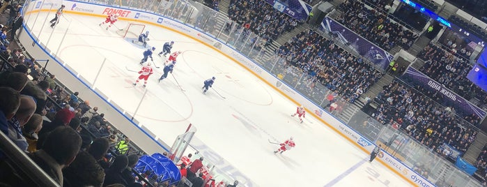 Multifunctional VTB Arena is one of Lieux qui ont plu à Dmitriy.