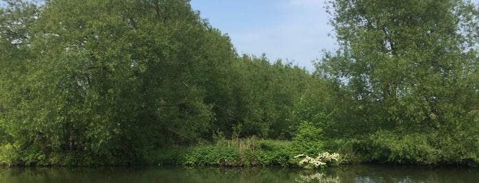 Riverside Park is one of Lugares favoritos de Carl.