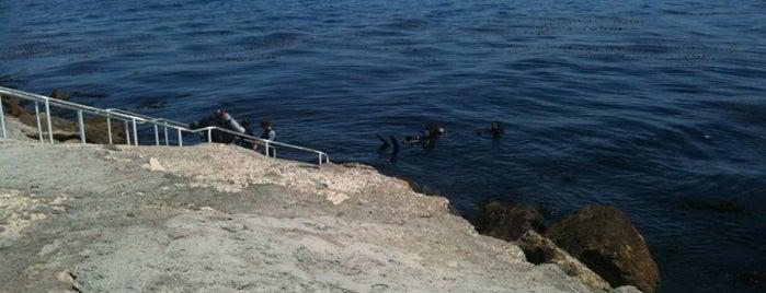 Mermaid Lookout is one of Global Workallholics Unified.