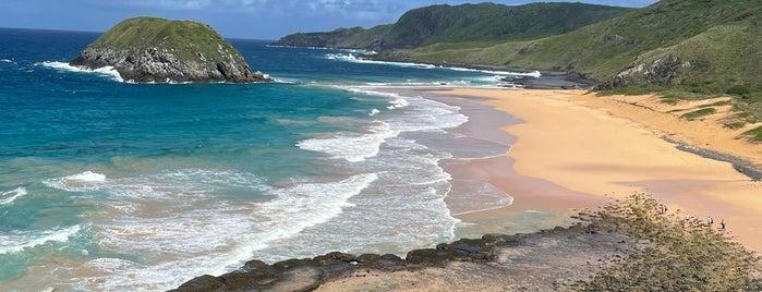 Praia do Leão is one of Fernando de Noronha.