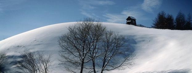 Daegwallyeong Sheep Ranch is one of South Korea.