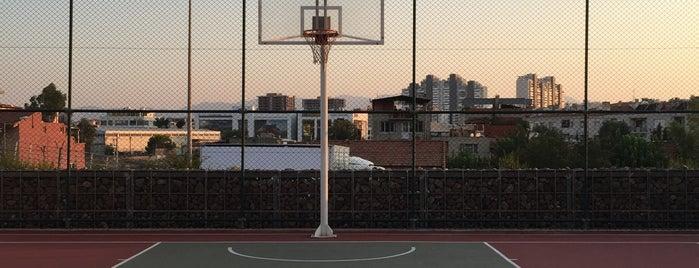 Soyak Siesta Basketbol Sahası is one of Lugares favoritos de Kaan.