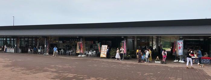 京丹波ステーション is one of Tempat yang Disukai Shigeo.