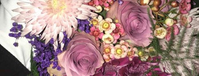 Gardenia is one of Posti che sono piaciuti a Rogayah.
