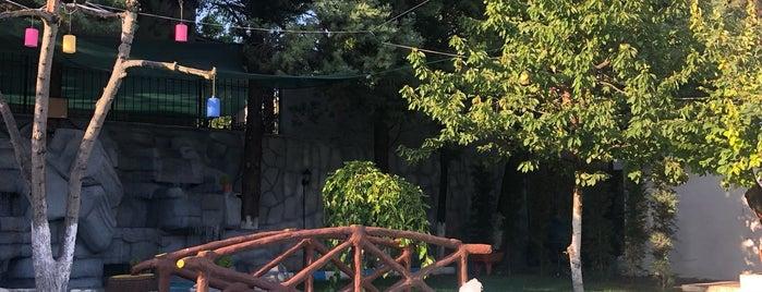 Balıkçı Cavit Bademli is one of Horeca visit.