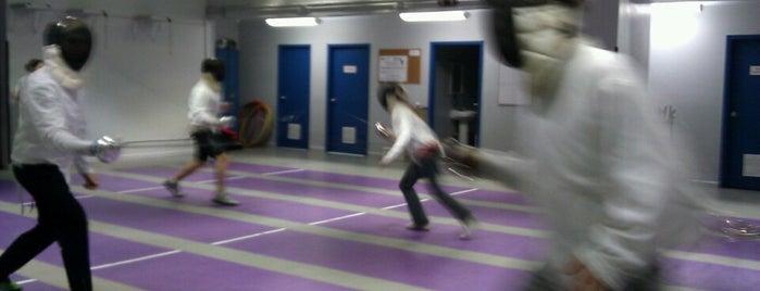 Sheridan Fencing Academy is one of Activities.