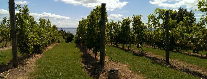 The County Cider Company is one of Out of Towning - discover Ontario.