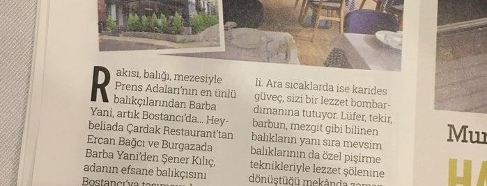 Barbayani Bostancı is one of Denenecekler.
