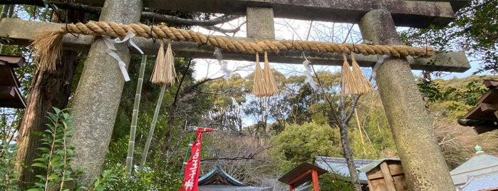 熊野若王子神社 is one of Orte, die Mike gefallen.