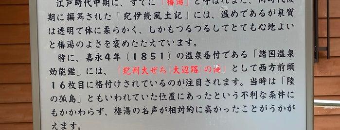 道の駅 椿はなの湯 is one of Locais curtidos por 高井.