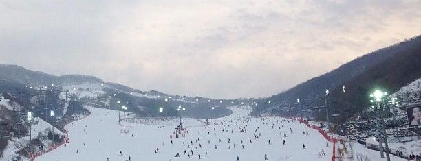 Konjiam Resort Ski Area is one of Arie : понравившиеся места.