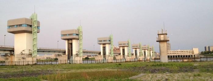淀川 淡水と汽水域の境 is one of 淀川探訪.