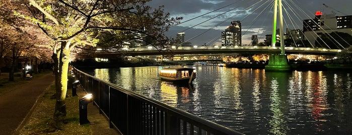 大川沿い桜並木 is one of Osaka Eats/Drinks/Shopping/Stays.