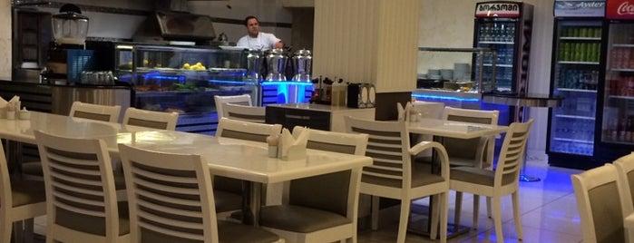 Mevlana Restaurant is one of Locais curtidos por Nabi.