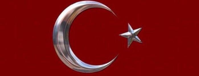 Kaplan Gayrimenkul Geliştirme Ve Yatırım A.Ş is one of Istanbul - Turkey 2.