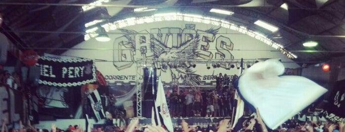 Grêmio Gaviões da Fiel Torcida is one of Lugares que recomendo - SP.