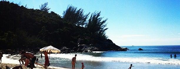 Praia da Ferrugem is one of Praias que conheço.