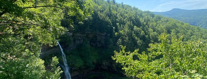 Kaaterskill Falls Observation Deck is one of Erikさんのお気に入りスポット.