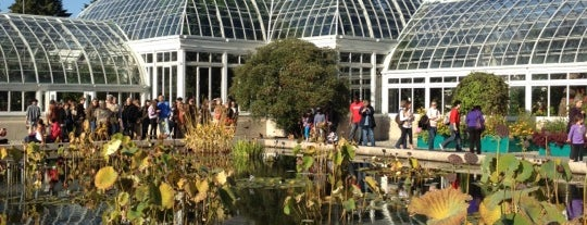 The New York Botanical Garden is one of Adult Camp!.