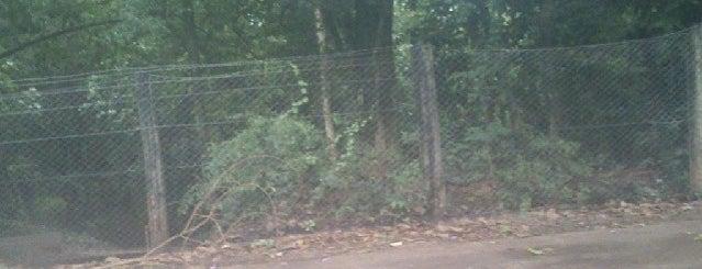 Bosque do indio is one of Locais curtidos por Alan Jefferson.