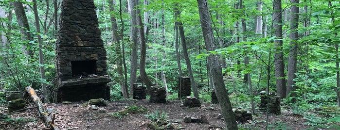 Black River Trail is one of Posti che sono piaciuti a Lenny.