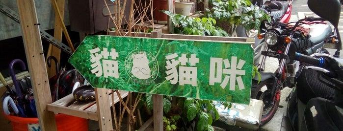 貓咪貓咪CatCat 桌遊咖啡屋 is one of 桌遊店和俱樂部 Board game shops/cafes in Taipei.