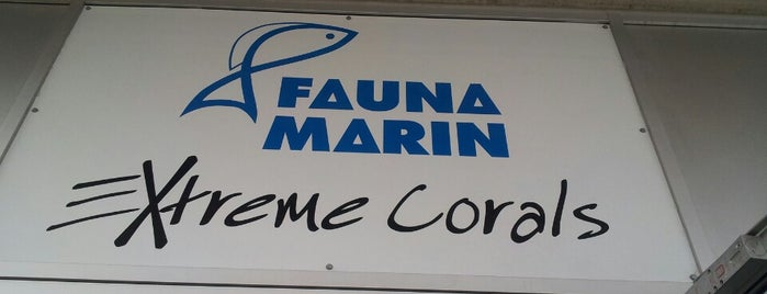 Fauna Marin Extreme Corals is one of Martin : понравившиеся места.