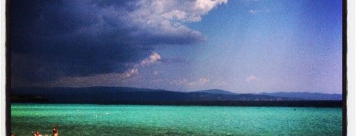 Τρανή Αμμούδα is one of Chalkidiki.
