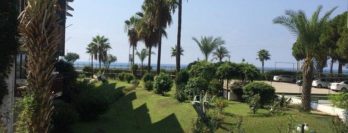 Sedirkent Beach is one of Orte, die Yunus gefallen.