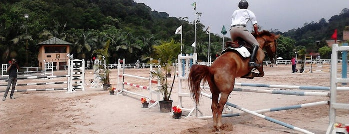CESB Centro Equestre Sao Bernardo is one of Interaçao.
